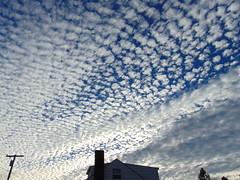 DSC01235 (StormJunkie2015) Tags: clouds sky weather skies altocumulus cumulus alto meteorology