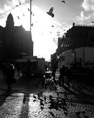 Dam Square today (milov) Tags: instagram phonecam motox fbme tweetme tall amsterdam bw backlit contrast animals birds pigeons duiven flock people silhouette dam damsquare peekcloppenburg sky clouds sun street tracks truck foodtruck hotdogs
