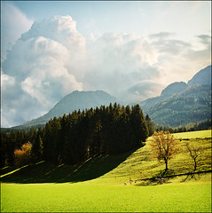Rest in the shade (Katarina 2353) Tags: landscape alps germany deutschland katarina2353 katarinastefanovic