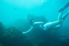20150808-DSC_4622.jpg (d3_plus) Tags: sea sky fish beach japan scenery underwater diving snorkeling  shizuoka    apnea izu j4  waterproofcase    skindiving minamiizu       nikon1 hirizo  1030mm  nakagi 1  nikon1j4 1nikkorvr1030mmf3556pdzoom beachhirizo misakafishingport  1030mmpd nikonwpn3 wpn3