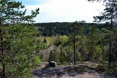 A lookout post along the Haukankierros trail (Nuuksio national park, Espoo, 20120520) (RainoL) Tags: forest espoo finland geotagged spring may u fin nuuksio 2012 uusimaa 201205 haukkalampi nuuksionationalpark 20120520 geo:lat=6031449000 geo:lon=2451452000