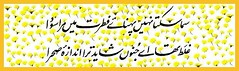 iqbal poetry 1 (shafique rehman shakir) Tags: poetry urdu iqbal allama