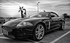 JAG-HDR-BW (Gikon) Tags: monochrome car blackwhite nikon jaguar hdr sigma1020 d7100 gikon