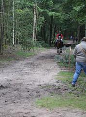 Doorn (Steenvoorde Leen - 1.7 ml views) Tags: horses horse jumping cross doorn pferde pferd reiten manege paard paarden springen 2015 utrechtseheuvelrug sgw arreche manegedentoom