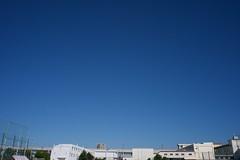 P1010418 Blue Autumn Sky by Panasonic LUMIX + Voigtländer SUPER WIDE-HELIAR 15mm F4.5 Aspherical Ⅱ (Keishi Etoh rough-and-ready photoglaph) Tags: yth panasonic lumix gm1 panasoniclumixgm1 dmcgm1 panasonicdmcgm1 microfourthirds voigtländersuperwideheliar15mmf45asphericalⅱ voigtländer cosina 30mm 広角 mf manualfocuslens 単焦点 primelens fixedfocallengthlens