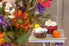 Stephanie&Cindy-Wedding-20151003-009 (Frank Kloskowski) Tags: wedding georgia cupcakes nicholson floweres stephaniecindy