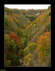 Couleurs d'Automne - Pont du Diable - Crouzet Migette (francky25) Tags: couleurs du pont paysage franchecomté diable doubs dautomne crouzet migette
