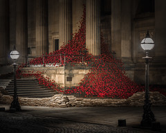872968-70 Liverpool Poppies (Walks Walker) Tags: uk light red england black building london tower st architecture tom night liverpool dark paul evening hall blood long exposure touch walker poppy poppies column piper lands swept hdr cummins seas colonnade merseyside thewalkertouch