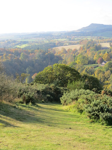 Scott's View, nr St. Boswells, October 2015