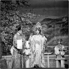 Cantonese Opera (Antony Dickson Photography) Tags: mamiya c220 opera performance culture f45 cantonese chineseopera sheko cantoneseopera 180mm