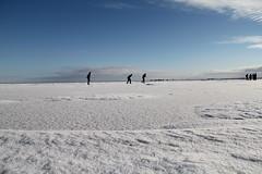 schaatsen op de Gouwzee (ice skating on the Gouwzee), Netherlands (C. Bien) Tags: winter snow holland ice netherlands iceskating sneeuw skating nederland ijsselmeer noordholland waterland ijs schaatsen northholland gouwzee laagholland