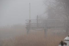 DSC_1011 (Six Sigma Man (Thank you for the 1.9M+ views)) Tags: fog nikon longisland nikond3200 coldspringharbor
