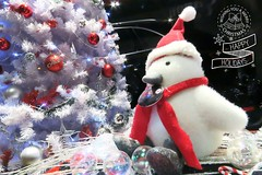 Merry Christmas (1018 Jack Wong) Tags: white festival canon happy holidays great fine decoration christmastree enjoy merrychristmas    2015