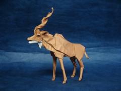 Kudu 2015 (shuki.kato) Tags: paper mammal origami antelope fold ungulate complex folding kato 225 kudu shuki