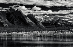 Abraham Lake (martincarlisle) Tags: autumn trees sky blackandwhite canada mountains fall monochrome clouds rockies seasons lakes alberta rockymountains davidthompsonhighway canadianrockies abrahamlake kootenayplains changingseasons davidthompsoncountry sigmalenses photoninja niksoftware sonycameras colourefex silverefexii