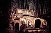 Old Austin (ildikoannable) Tags: old classic film analog austin lca rust automotive junkyard 365 wrack classicar project365
