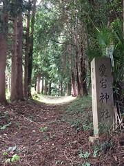 __18 (yabuki-keikanWS) Tags:   36