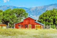 Rural Life (xTexAnne) Tags: diannewhite nikond7100 fromthepassengerseat rurallife landscape architecture barn nevada