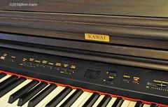 ODC--Logo (jfinnirwin) Tags: odclogo piano logos kawai instruments music musicalinstruments percussion