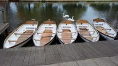 No takers! (kate&drew) Tags: 2016 october stratforduponavon rowingboat warwickshire