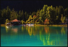 LakeLife (ELtano86) Tags: reflexion reflection reflexions eltano86 lake lago riflessi riflesso natura nature alpine albero alberi trees tree autumn autunno landscapes landscape dolomite dolomiti dolomiten dolomites