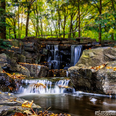 River of Leaves (gvonwahlde) Tags: waterfall minnesotalandscapearboretum minnesota mn water leaves autumn fall canon vonwahlde