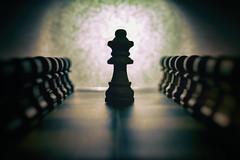 Lunar queen. (PommieDad) Tags: chess silhouette light artistic pawn queen moon lunar
