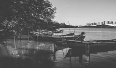 IMG_0053-2 (vianalucao) Tags: bw black white blackwhite blackandwhite pretoebranco pb preto e branco brasil aracaju sergipe nature natureza brazil boats lake boat