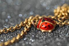 "Macro Mondays - Beetles/Beatles ""Explored 29th November 2016 (sylviamay1963) Tags: macromondaysbeetlesbeatles gold ladybird beetle beatles chains bokeh explored 35 music songs red spots"