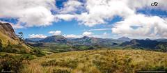 Eravikulam National Park (Anwer Reyaz) Tags: eravikulam national park munnar