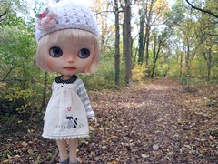 A walk in the woods with Chelsea