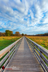 Along the Path (andrewslaterphoto) Tags: boardwalk clouds foxrivertrail landscape nature naturetrail sunrise waukesha wisconsin unitedstates us discoverwisconsin travelwisconsin landscapephotography andrewslaterphotography canon 5dmarkiii waukeshawi visitwisconsin wi grass