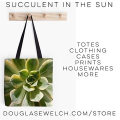 Gift these Succulent in the Sun Tote and much more. #bags #totes #clothing #cases #prints #succulent #plants #nature #garden #product #forsale #buy (dewelch) Tags: ifttt instagram gift these succulent sun tote much more bags totes clothing cases prints plants nature garden product forsale buy