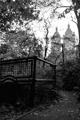 XT1-11-02-15-227-2 (a.cadore) Tags: fujifilmxt1 fujifilm xt1 zeissbiogon28mmf28 biogont2828 zeiss carlzeiss newyorkcity nyc uptown centralpark landscape sanremo blackandwhite bw