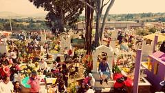 IMG_20161102_115617346 (ale.reyesale) Tags: day dead panten visita fiesta tradicin colores mxico muerte photograph