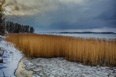 Winter light (Joni Mansikka) Tags: winter nature sea shore trees snow clouds skies ice water outdoor landscape sauvo suomi finland canonef2880mmf3556