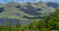 Panorama from Bealach Ratagan. (Scotland by NJC.) Tags: scotland unitedkingdom gb fjord inlet sound creek firth sealoch enseada  ensenada crique bucht insenatura    mountains hills highlands peaks fells massif pinnacle ben munro heights  montanha  planina hora bjerg berg montaa vuori montagne  montagna fjell forest woodland plantation trees grove temperate rainforest  floresta  uma les skov bos bosque grande mets fort wald  foresta skog las pdure