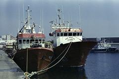 No porto, Ribeira (trabancos) Tags: canon eos 1n ef 50mm 14 usm fuji reala 500d ecn2 rollei colorchem c41 35m film ribeira barbanza galicia