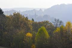 A travers la lgre brume automnale (Excalibur67) Tags: nikon d750 sigma apo70200f28exdgoshsm paysage landscape alsace automne autumn brume mist vosgesdunord arbres trees