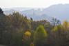 A travers la légère brume automnale (Excalibur67) Tags: nikon d750 sigma apo70200f28exdgoshsm paysage landscape alsace automne autumn brume mist vosgesdunord arbres trees