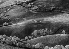_DSC5111 (Giuseppe Cocchieri) Tags: bw blackwhite blackandwhite bianconero biancoenero countryside campagna hill hills colline collina landscape paesaggio n