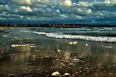 En el azul... (ZAP.M) Tags: azul playa orilla paisaje naturaleza nature beach labarrosa chiclana cdiz andaluca espaa flickr zapm mpazdelcerro nikon nikond5300