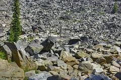 The Place of Rocks (jimgspokane) Tags: lickcreekroad idahostate forests camping countryroads