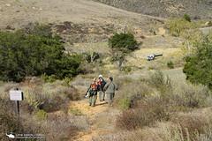 IMG_9766_v1OCSDweb_w (PhantomPhan1974 Photography) Tags: sar orangecountysheriffsdepartment airsupport airbushelicopters bellhelicopters uh1h as350b2 as350b3 n186sd n185sd n518hp n226pd anahiempolicedepartment californiahighwaypatrol huntingtonbeachpolicedepartment duke henryone angel1