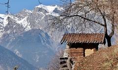 Isérables (bulbocode909) Tags: valais suisse isérables cabanes arbres nature montagnes neige automne paysages bleu
