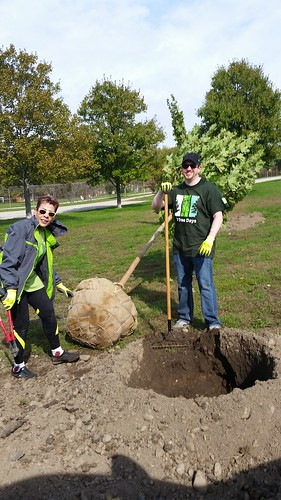 TD Tree Days- Pennypack on the Delaware, October 16, 2016
