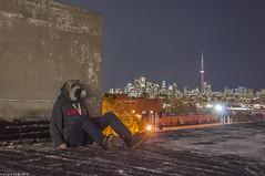 Toronto Night Life (TdotShutterSpy) Tags: toronto raccoon ontario explore canada cn tower shutter spy shutterspy roof urbex rooftopping mask long exposure night photography skyline