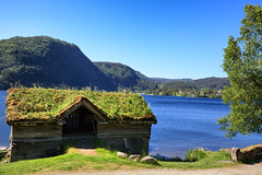 113843_AB_6048 (aud.watson) Tags: europe norway sognogfjordane sunnfjord museum oldvillage oldsettlement historicvillage woodenhouse thatchedroof route e39