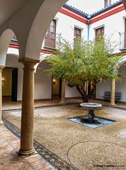 Casa Góngora (moligardf) Tags: casaspalacio patio arquitectura edificio histórico salas de exposición empedrado columnas smartphone