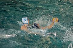 2C040751 (roel.ubels) Tags: len euro league waterpolo sport topsport utrecht uzsc 2016 krommerijn women